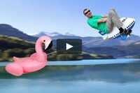 Crazy Horst - Flamand rose
